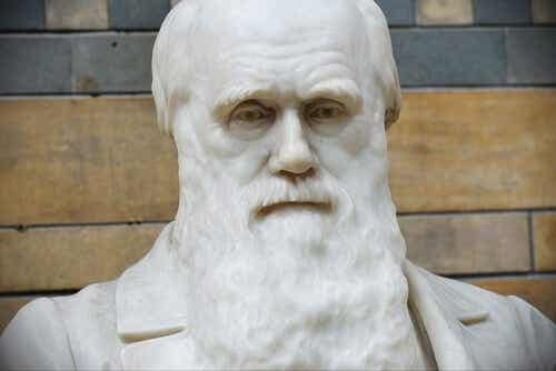 The Best Quotes from Charles Darwin