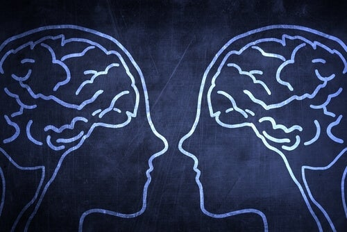 How Does the Social Brain Give Humans an Evolutionary Advantage?