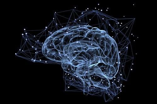 Illuminated brain.