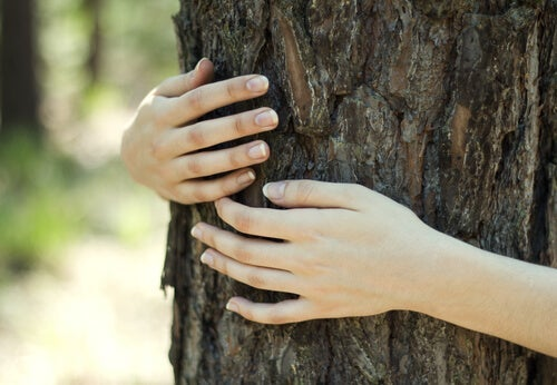 An image representing ecofeminism of a women embracing a tree.