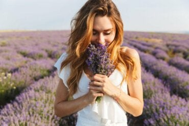 What's Olfactory Memory and How Does it Work?