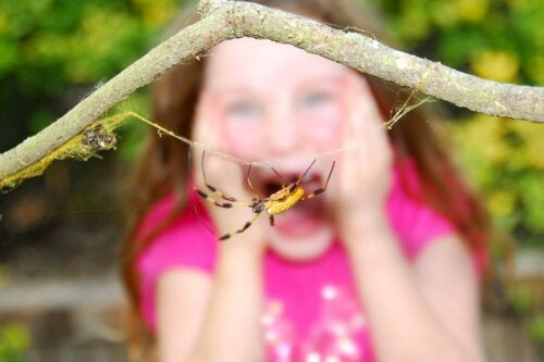 A child terrified of a spider.