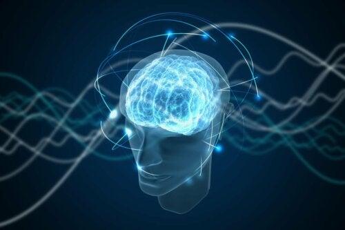 A brain representing human consciousness.
