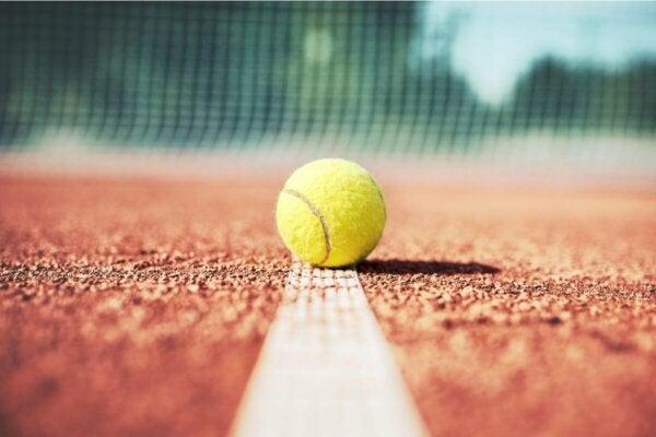 A tennis ball.