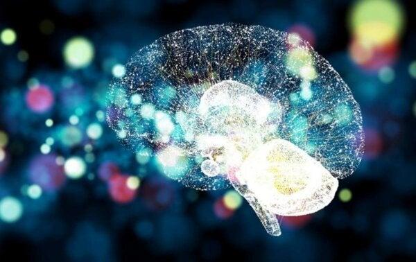 An iluminated brain.