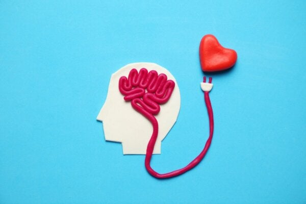 A brain and a heart.