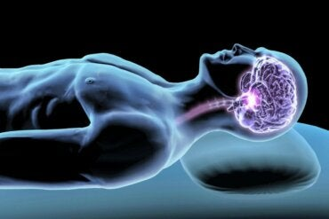 Sleep Hormones: Mediating Agents for a Good Night's Rest