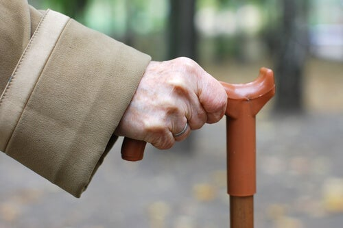 Cane Fu, a New Martial Art for Senior Citizens