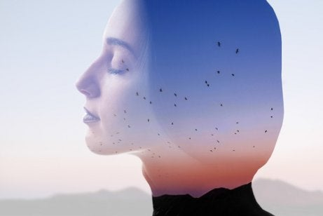 A woman superimposed on a photo of birds flying.