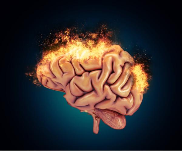 The reactive brain.