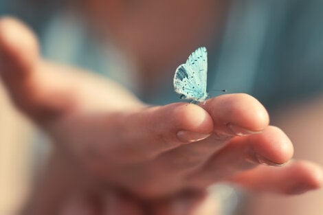A person holding a butterfly.
