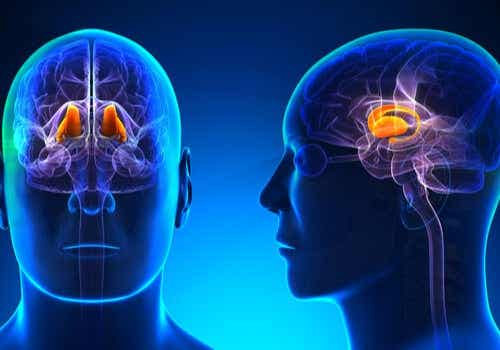 Symptoms and Treatment of Thalamic Pain Syndrome