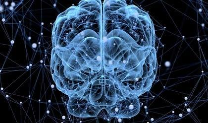 Inside a brain.