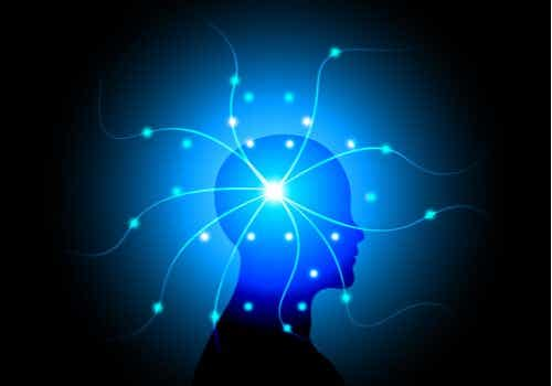 The Theories of Indian Neurologist Vilayanur Ramachandran