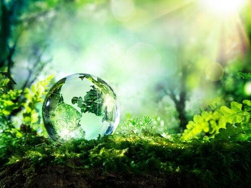 A glass ball of a world.