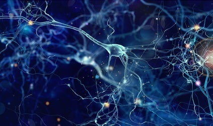 Some neurons.