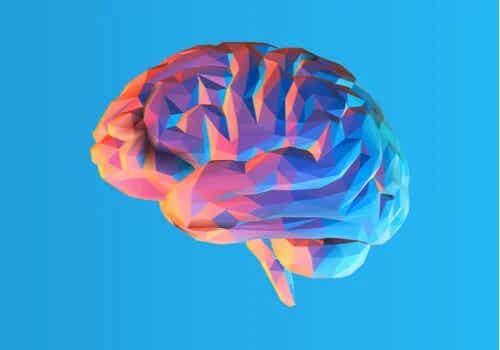 The Bilingual Brain: Advantages and Disadvantages