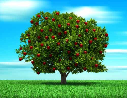 The Parable of the Tree, a Story About Parental Love
