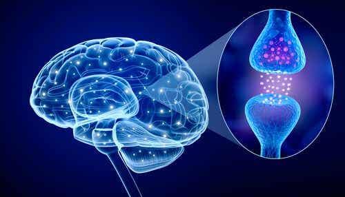 What's Psychoneuroimmunology?