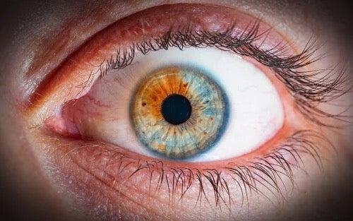 An eye.