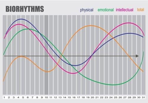 A chart of biorhythms.