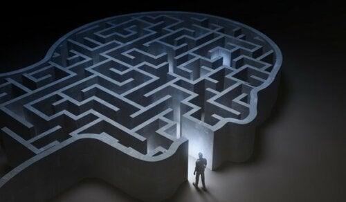A labyrinth shaped like a head.