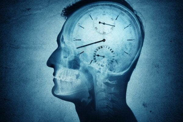 Chronobiology and Its Impact in Humans