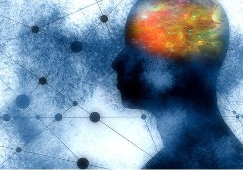 Three Striking Functions of Mirror Neurons