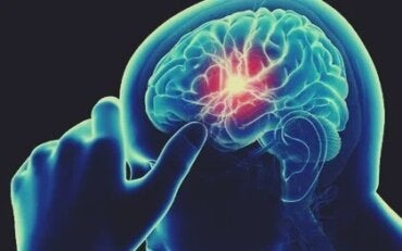 A Lack of Vitamin B12 Can Cause Cognitive Decline