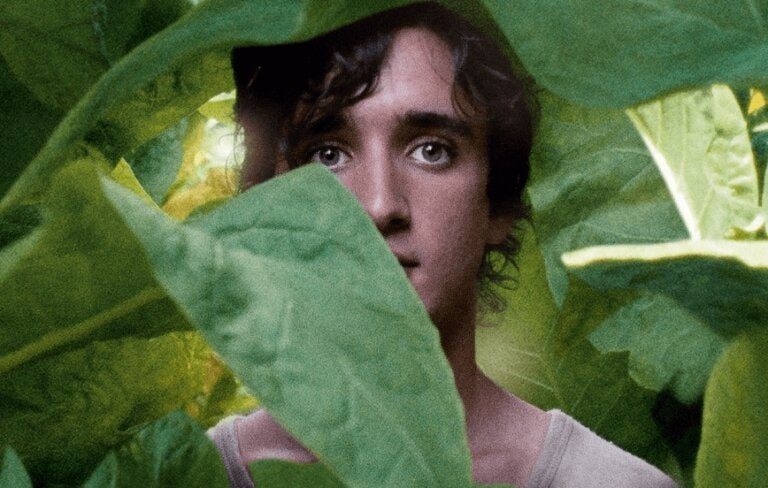 Happy as Lazzaro,a Film About Goodness
