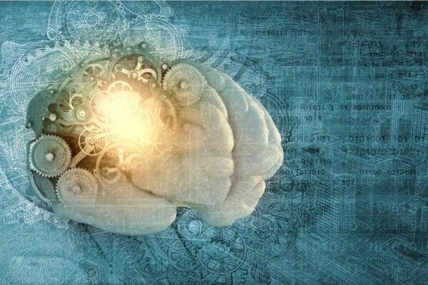 Een brein met versnellingen
