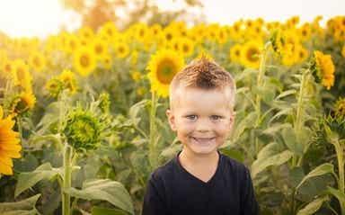 A child in a sunflower field.