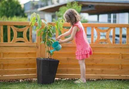 Watering plants is one of the appropriate chores for kids..