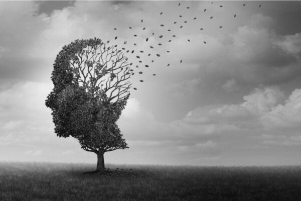 Thought Broadcasting: Can Others Read Your Mind?