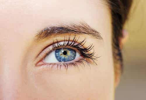 눈맞춤이 눈의 움직임을 읽는 법