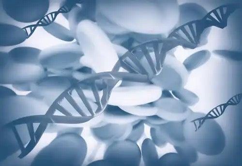 A diagram showing epigenetics.