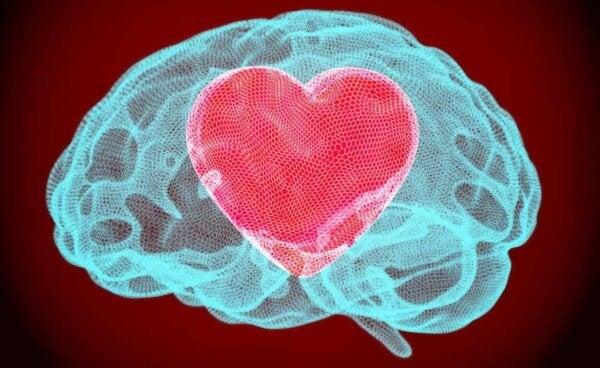 En hjärna med ett hjärta.