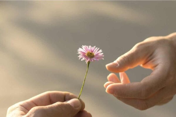 A flower that implies life and hope.