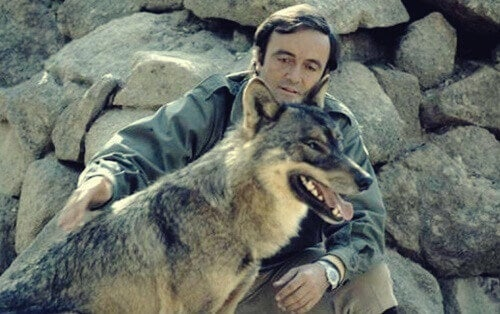 Félix Rodríguez de la Fuente, TV Environmentalist Extraordinaire