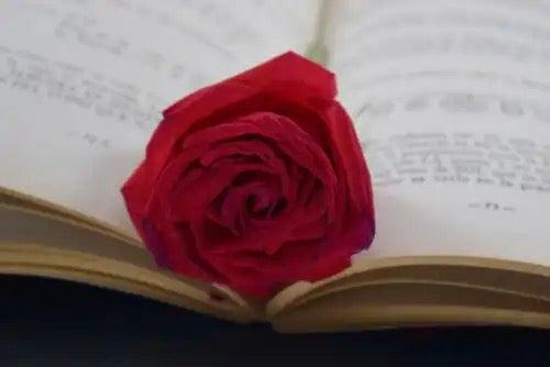 A rose in a book.