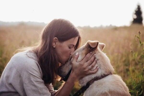 동물을 사랑하는 이들과 그렇지 않은 이들의 차이
