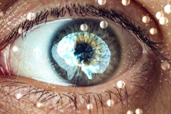 The Ganzfeld Effect: A Fascinating Look Inside Your Mind