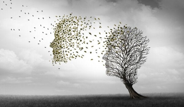 The Differences Between Alzheimer's and Dementia