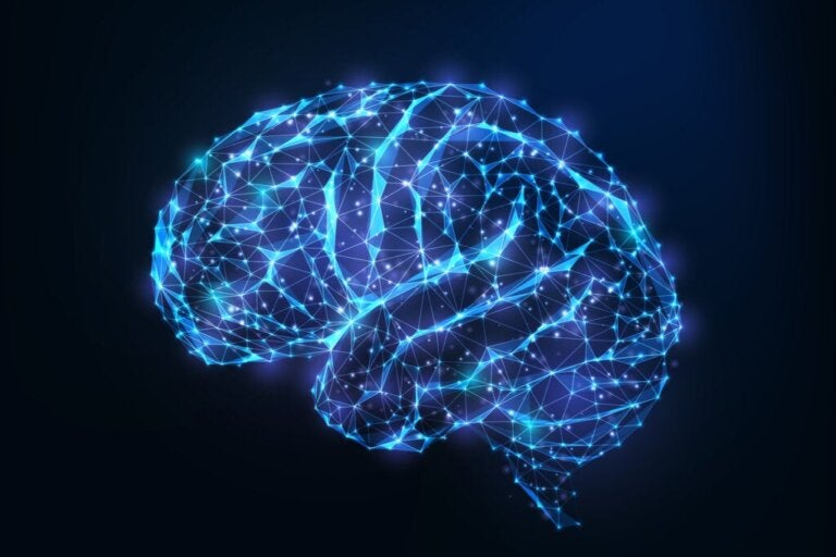 Brain Androgyny: What is it and What are its Benefits?