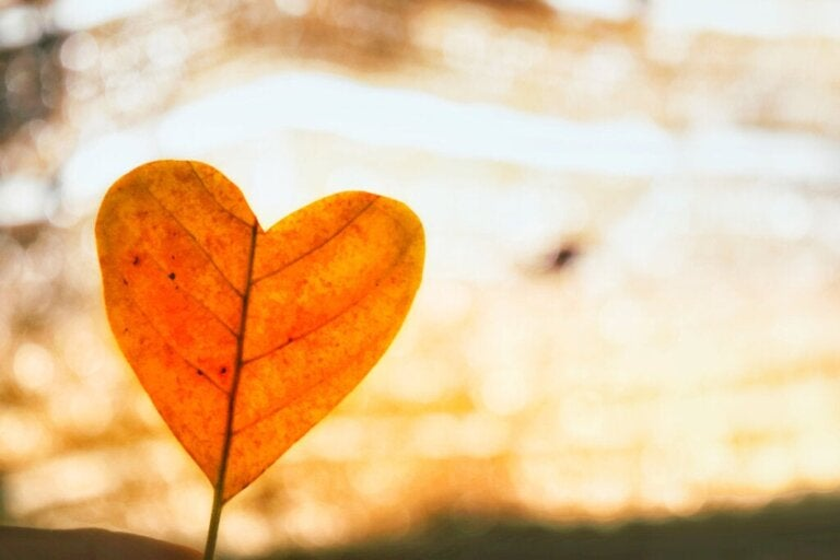 Using Unconditional Love to Get Over a Breakup