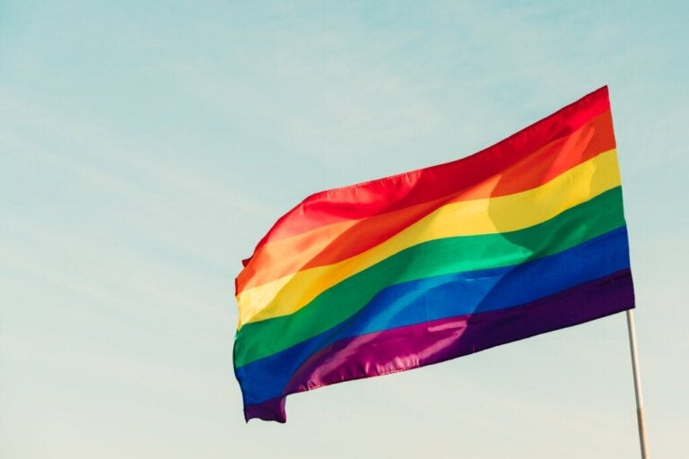 The LGBTIQ+ Movement: What is it and How Did it Start?