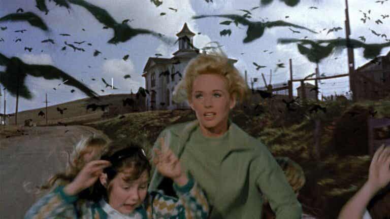 The Birds: Unleashing Ornithophobia